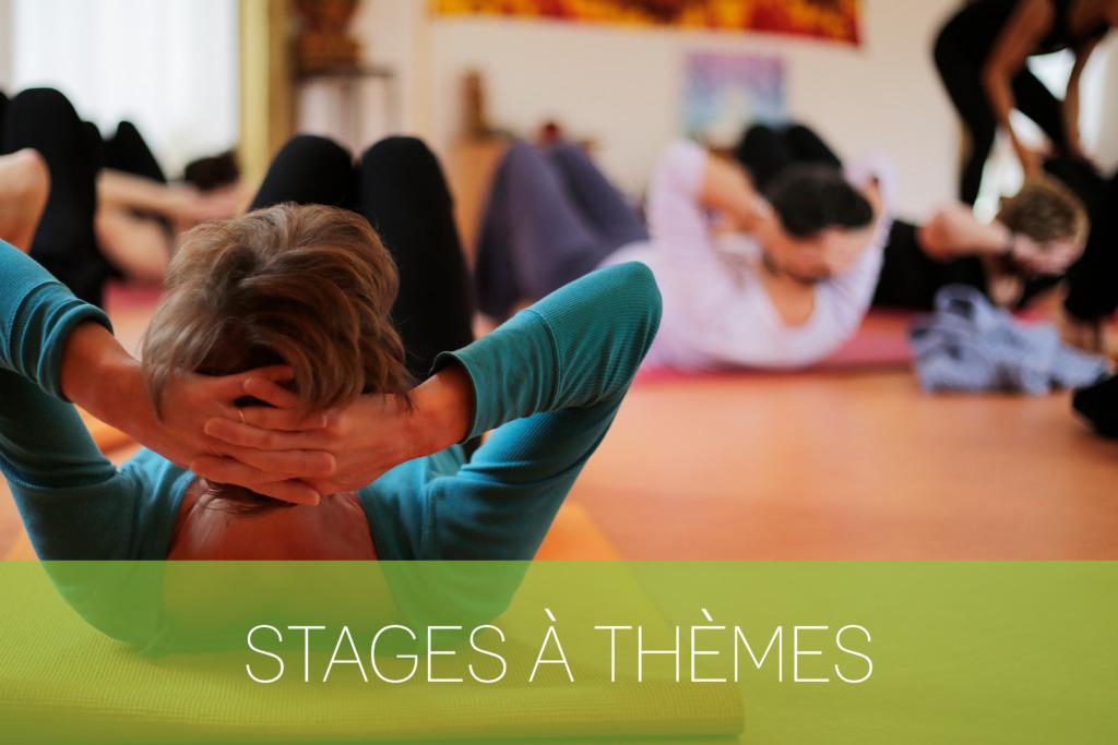 Stages à thèmes